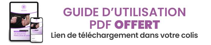 pdf guide d'utilisation
