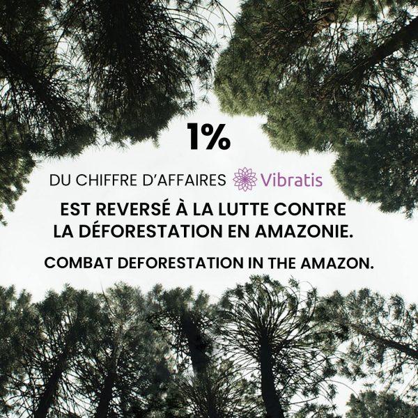 Reforestation de l'Amazonie